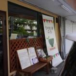 『「玄米食の店 のら」さんで優しいランチいただいてきました。』の画像
