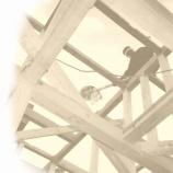『上棟です』の画像