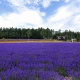 『【北海道ひとり旅】上川の旅『彩香の里』紫色に染まるラベンダーの丘』の画像