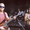 Sting & Sting