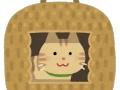 【画像】猫さん、サンタさんにプレゼントをもらい大満足wwwww