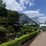 『5月中旬の都立薬用植物園Ⅱ;小平市』の画像
