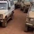 近所のネコが道の真ん中に寝転んでいて車が大渋滞 → アフリカだとこんな感じ…