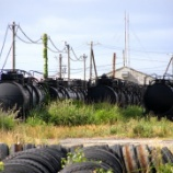『思い出の風景 残された酒田港のタンク車たち』の画像