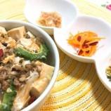 『作り置きおかず+ゴーヤと豆腐でクールダウン薬膳♪ 』の画像