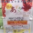 今週の板橋区イベントまとめ【2019.11.23(土)〜11.29(金)】