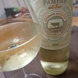 『アルゼンチンワイン~Pampas del Sur Expresion Argentina Torrontés パンパス・デル・スール エクスプレッション・アルゼンティーナ トロンテス[2015]』の画像
