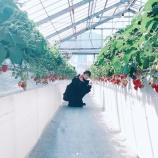 『【乃木坂46】若月佑美、一緒にイチゴ狩りに行っていた人は超大物だった!!!!』の画像