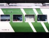 『緑斜めストライプ健在!』の画像