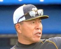 阪神・井上コーチ「マルテ、サンズ、ボーアいるが大山は外したくない。何らかの形で打線に入れる」