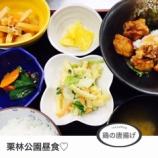 『今日の栗林公園昼食(鶏の唐揚げ)』の画像