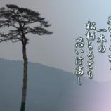 『一本の松』の画像