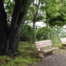 誰が据えしベンチの在りぬ木下闇 やんま