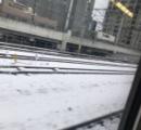 【銀世界】福岡市の雪がすごいんご