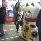 『招き猫も並ぶ売り場』の画像