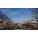 『春ももうすぐ』の画像