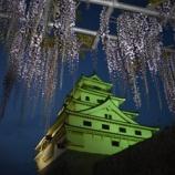 『 ZLS部活動報告20190421 夜の唐津城 藤の花』の画像