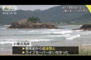 溺れた姉妹を助けようとした父親(48)、波にさらわれる…サーファーが救助するも死亡