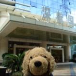 『シンセンです~【深セン航空ホテルって!】』の画像
