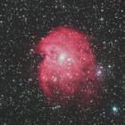 『オリオン座のモンキーフェイス星雲(NGC2174)』の画像