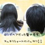 『ロングだった髪から一転 元気ハツラツショートに変身!』の画像