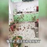 【動画】中国、悲報!アレが爆発し部屋中に飛び散り大惨事に!床もアレだらけ…