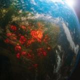 【人類終了のお知らせ】国連、「人類存亡」の厳戒警報を発表→その内容がこちら・・・