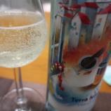『夏限定の爽やか微発砲ポルトガルワイン「Terra Nossa(テッラ・ノッサ)ヴィーニョ・ヴェルデ」』の画像