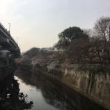 『本日の江戸川橋の桜』の画像
