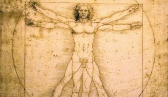 もし産まれる時にパラメーター100を「知力」「容姿」「体力」に振れるとしたら