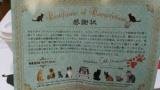 保護された猫達と触れ合えて里親にもなれる保護猫カフェいってきた(※画像あり)