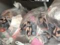 【悲報】1日で258万枚の売上を記録したAKB48のCD、陶然の様に捨てられる (画像あり)