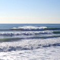 WILDERNESS SURFBOARDS/GISMO TWIN FISH