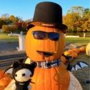 大沼公園のハロウィンのかぼちゃとあみぐるみくまちゃん♡