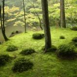 『いつか行きたい日本の名所 西芳寺(苔寺)』の画像