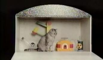シュレーディンガーの猫を頭の悪い俺にわかり易く説明してみろ