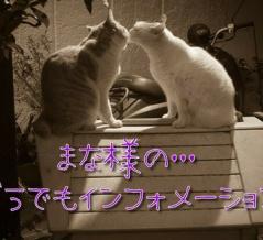 「ストーブって本当に有り難い、宅飲み〆の蕎麦も美味な様~~~☆彡」×「椎名林檎×イチロー」
