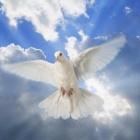 『『御心のままに』No17ペンテコステの聖霊降臨は何故にエルサレムだったのか?その1』の画像