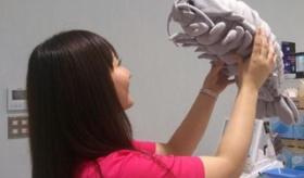 【ぬいぐるみ】    日本で ダイオウグソクムシ のぬいぐるみが発売。 キモカワイイさが好評となり 3時間で完売。   海外の反応