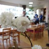 『お花見→懇親会』の画像