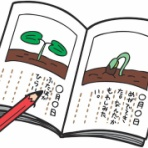 小学1年生の自由研究ガイド