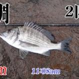 『雨中釣行なんてするもンじゃない!周防大島の黒鯛釣り #021』の画像