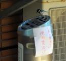 タバコ捨てちゃダメ! シジュウカラ、灰皿に「愛の巣」