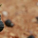 『平和への願い:催涙ガス弾に花を植える女性』の画像