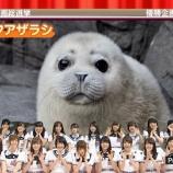 『【乃木坂46】可愛い動物を見たとき橋本奈々未だけリアクション違っててワロタwww【NOGIBINGO!5】』の画像