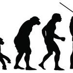 何で地球上に高知脳生命は人間しかいないの?