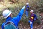 まるで図鑑!交野の生態系が網羅!交野里山ゆうゆう会の『交野の自然』っていうコーナーがすごい!
