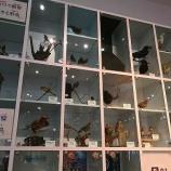 『スキップシティにある川口市立科学館へ訪問。灯台下暗しの良施設!』の画像