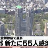 『東京の人材派遣会社で職場内クラスターはどこか会社名や場所の名前を5chが特定』の画像
