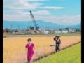 【悲報】稲田朋美さん、突然赤ワンピで田んぼ道を走る写真を投稿